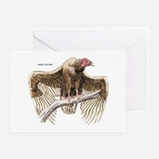Turkey Vulture Bird Greeting Card