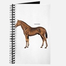 Thoroughbred Horse Journal
