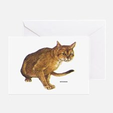 Abyssinian Cat Greeting Card