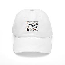 Massachusetts State Animals Baseball Cap