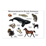 Massachusetts Postcards