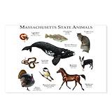 Massachusetts Postcards