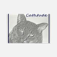 Cattitude Rectangle Magnet