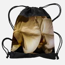 Mass Hort 5 wc.jpg Drawstring Bag