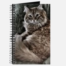 The Cat Journal