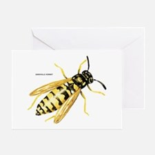 Sandhills Hornet Insect Greeting Card