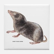 Short-Tailed Shrew Tile Coaster