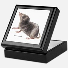 Short-Tailed Shrew Keepsake Box