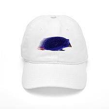 Sonic Baseball Baseball Cap