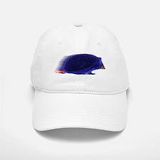 Sonic Baseball Cap
