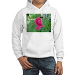 Beautiful Rose Photo Hooded Sweatshirt