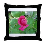Beautiful Rose Photo Throw Pillow