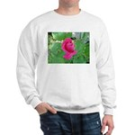 Beautiful Rose Photo Sweatshirt