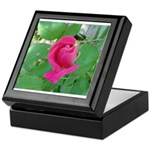 Beautiful Rose Photo Keepsake Box