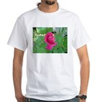 Beautiful Rose Photo White T-Shirt