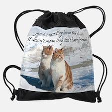Feral Cats 90a Drawstring Bag