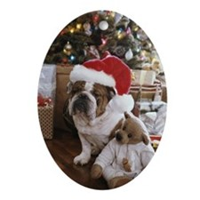 English bulldog and teddy bear sit Ornament (Oval)