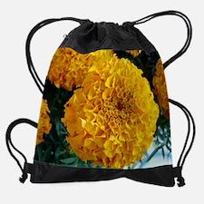 Growth04.JPG Drawstring Bag