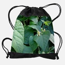 Growth05.JPG Drawstring Bag