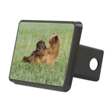 Relaxing Brown Bear cub Hitch Cover