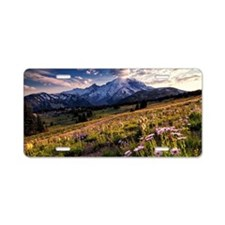 Meadow Aluminum License Plate