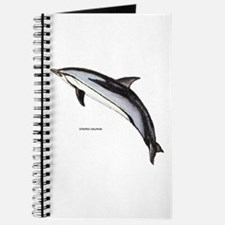 Striped Dolphin Journal
