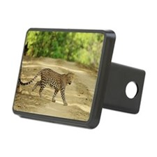Indian leopard at Kanha Ti Hitch Cover