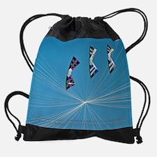 9 I Quad Team Flying Drawstring Bag