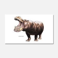 Hippopotamus Animal Car Magnet 20 x 12