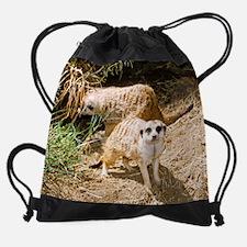 Funny Custom pet flags Drawstring Bag