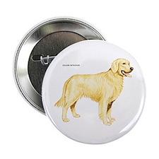 "Golden Retriever Dog 2.25"" Button"