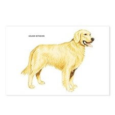 Golden Retriever Dog Postcards (Package of 8)