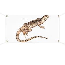 Desert Iguana Banner