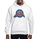 San Bernardino Cave Rescue Hooded Sweatshirt