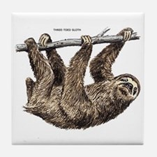 Three-Toed Sloth Tile Coaster