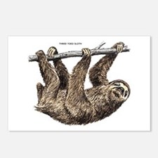 Three-Toed Sloth Postcards (Package of 8)
