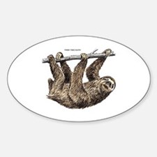 Three-Toed Sloth Decal
