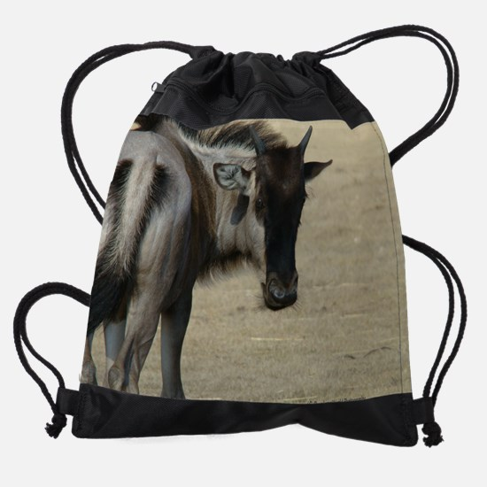w1.jpg Drawstring Bag
