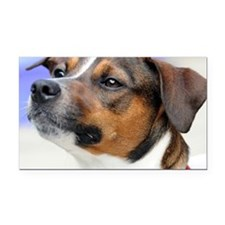 Jack Russell terrier Rectangle Car Magnet