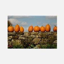 Pumpkins on Parade Rectangle Magnet