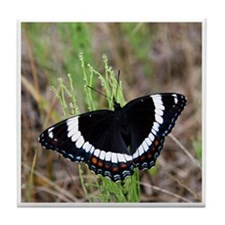 White Admiral Tile Coaster
