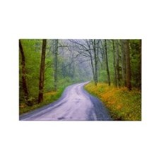 Country road, great smoky mountai Rectangle Magnet