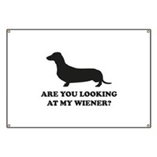 Are You Looking Banner