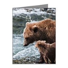 Decisions, Decisions, Decisi Note Cards (Pk of 20)