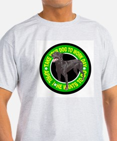 TAKE YOUR DOBIE Ash Grey T-Shirt