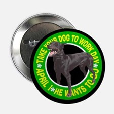 TAKE YOUR DOBIE Button