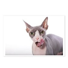 Sphynx Cat with tongue ou Postcards (Package of 8)