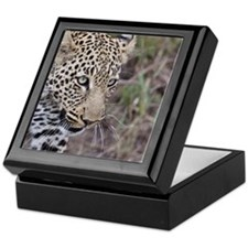 Portrait of leopard Keepsake Box