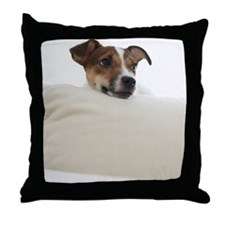 Jack Russell Terrier Lying on Cushion Throw Pillow