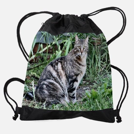 abbpacal.png Drawstring Bag